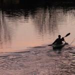 plaukimas-vilnele