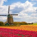 Vežame į Olandiją